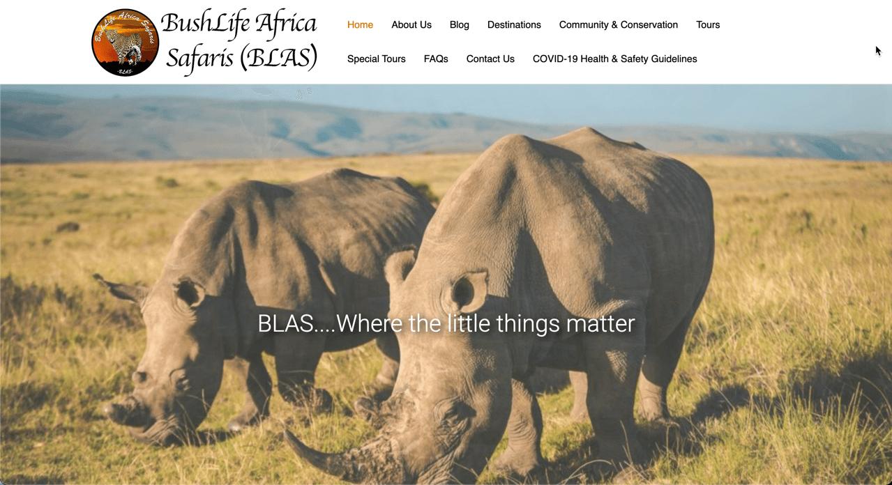 https://jasonkruger.com/wp-content/uploads/2021/03/BushLife-Africa-Safaris-Website.png